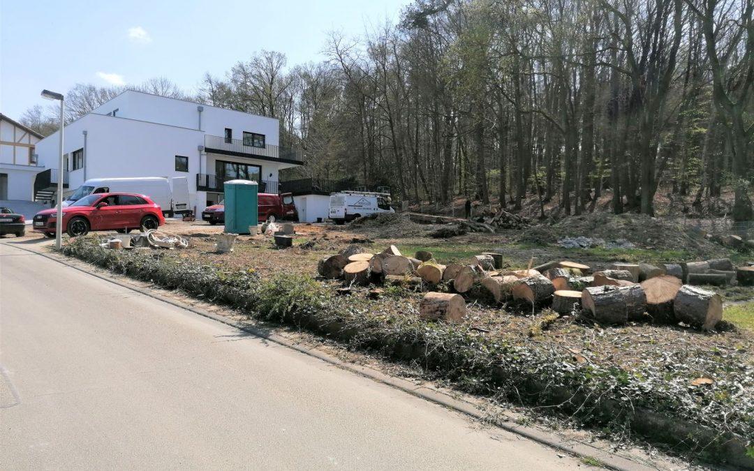 Baustart Mehrfamilienhaus in Bonn-Holzlar